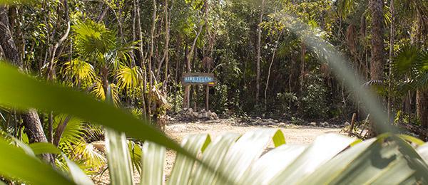 Terrenos residenciales en Tulum