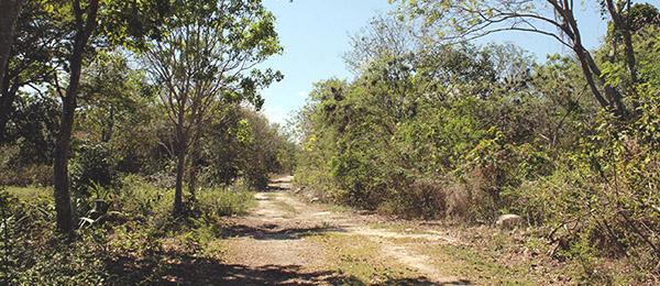 Terrenos de inversión Cancún - Riviera Maya